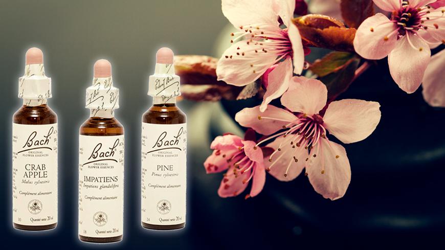Conférence sur le bien-être des seniors – aromathérapie