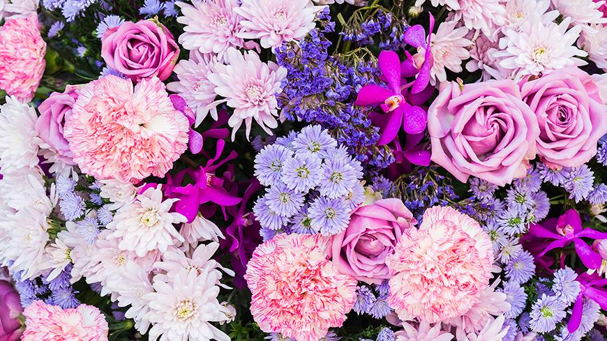 Espace floral Md Lemaire – Boussu